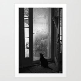 Cat Looking Through Window in Winter Art Print