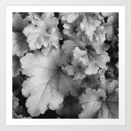 leaves.  Art Print