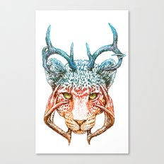 Cheedeera Canvas Print