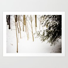 Simply stated Art Print