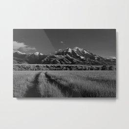 Emigrant Peak, No. 1 Metal Print
