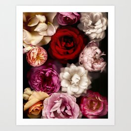 Pink, White, and Red Roses Art Print