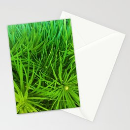Plantypoofs! Stationery Cards