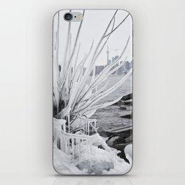 polson pier toronto iPhone Skin