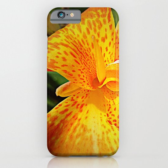 'TIGER TIGER' iPhone & iPod Case