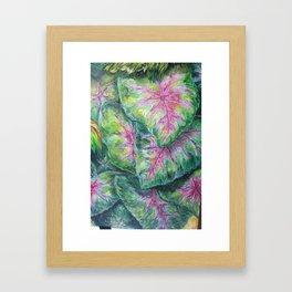 Tropical (Caladium Detail) Framed Art Print