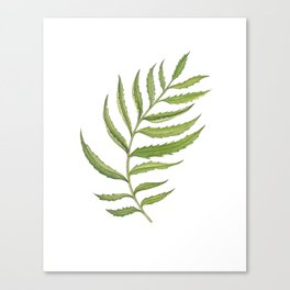 Green Marigold Leaf handpainted with watercolor now available in digital prints Canvas Print