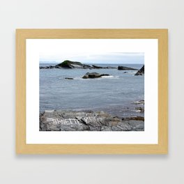 Gull Island Framed Art Print