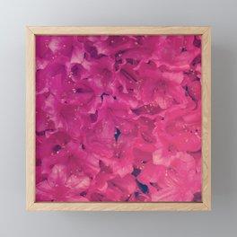 Serenity Floral III Framed Mini Art Print