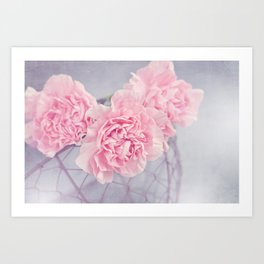 Pale Pink Carnations Art Print