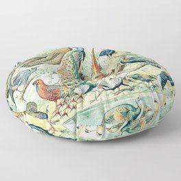 Farm Birds // Oiseaux III by Adolphe Millot XL 19th Century Science Textbook Diagram Artwork Floor Pillow
