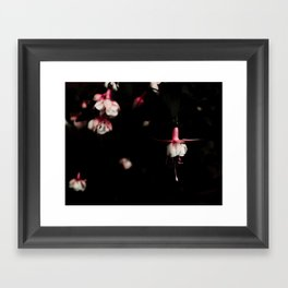 Fuschia Framed Art Print