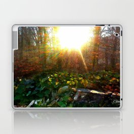 'Pouring Morning Sunshine' Laptop & iPad Skin