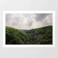 Swedish Forest Landscape Art Print