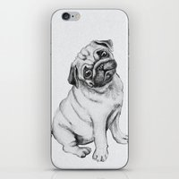 pug iPhone & iPod Skins featuring Pug by Maripili