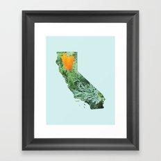 California Poppy in NorCal - State Flower Framed Art Print