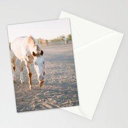 Graceful Stationery Cards