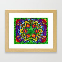 Herbal Cure Framed Art Print