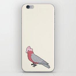 Pixel / 8-bit Parrot: Galah Cockatoo iPhone Skin