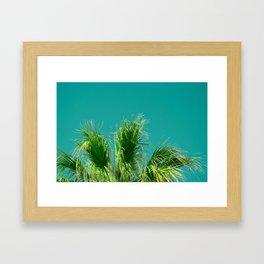 Palms on Turquoise Framed Art Print