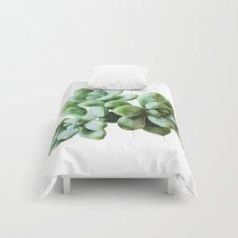 Succulent Blooms - Greenery Comforters