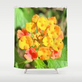 Watercolor Flower Lantana 01, Gulf Island Beach, Florida Shower Curtain