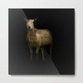 Ewe Portrait Metal Print