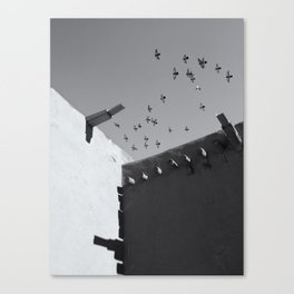 Mission Flight 1 Canvas Print