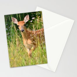 Little Baby Deer Stationery Cards