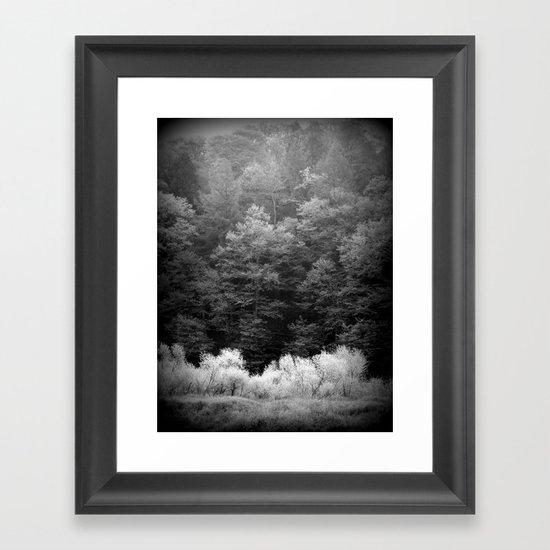 The Forest Keeps Secrets Framed Art Print