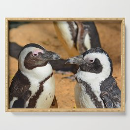 African penguins Serving Tray