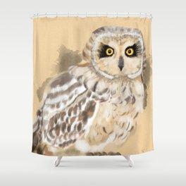 Short Eared Owl #2 Shower Curtain