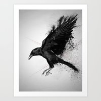 crow Art Prints featuring Crow by Adam Flynn
