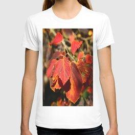 Colorful Autumn Leafes T-shirt