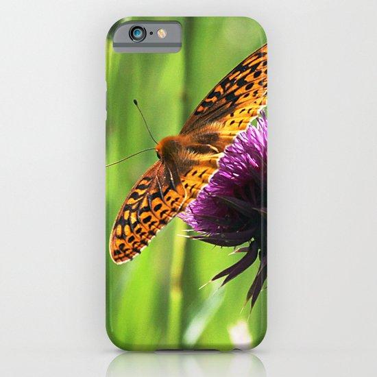 Great Spangled Fritillary iPhone & iPod Case