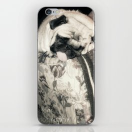 lazy pug iPhone Skin