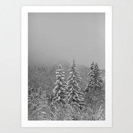 Snow2 Art Print