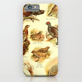 William Playne Pycraft - A Book of Birds (1908) - Plate 12: Game-birds iPhone Case