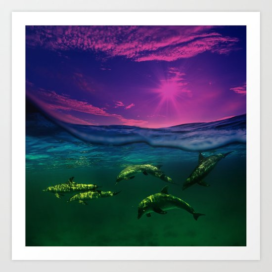 Dreaming Of Dolphins Art Print