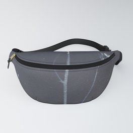 botanical cyanotype Fanny Pack