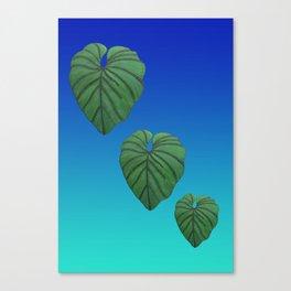 Australica Exotic Lush Leaf Canvas Print