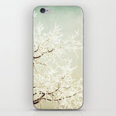 Frozen Tree iPhone & iPod Skin