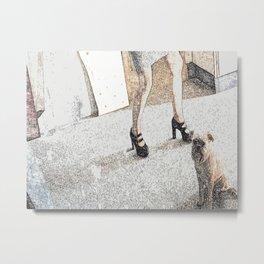 St: Simeon Griffon Bruxellois 20 Metal Print