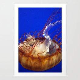 Jelly Fish Love Art Print