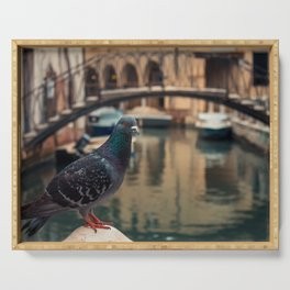 Dove perched on one of the points of the city of Venice Serving Tray