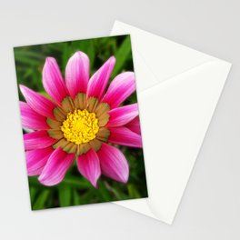 Dipladenia Stationery Cards