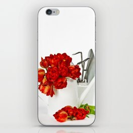Fresh red tulips in white watering can and garden tools iPhone Skin