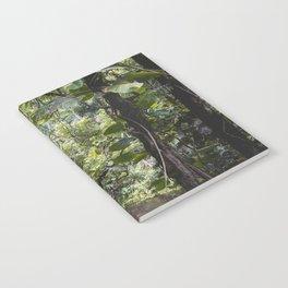 Hidden Jungle River Notebook