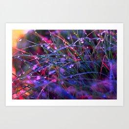 Colorful Dew Drops I Art Print