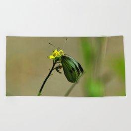 Green Winged Fairy Butterfly Beach Towel